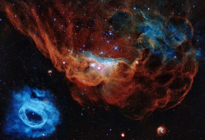 El retrato presenta la nebulosa gigante NGC 2014 y su vecina NGC 2020